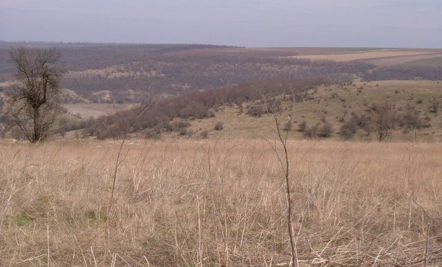 Thumbnail Land for sale in Surnets 2, Surnets, Bulgaria