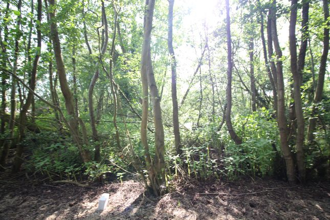 Thumbnail Land for sale in Woodlands Estate, Horning, Norwich