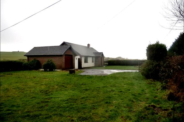 Thumbnail Bungalow to rent in Gorsgoch, Talgarreg