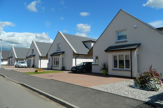 Thumbnail Detached house for sale in Mumbles Wynd, Carluke
