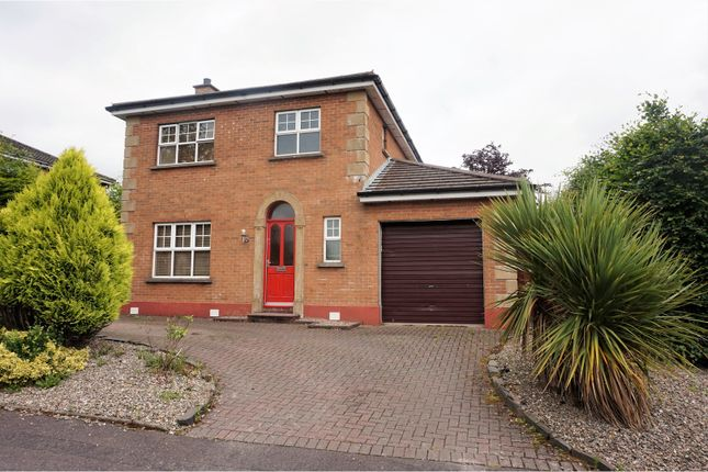 Thumbnail Detached house for sale in Knightsbridge, Derry / Londonderry