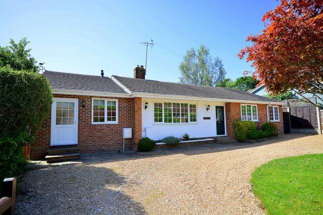 Detached bungalow for sale in Mapledrakes Road, Ewhurst, Cranleigh