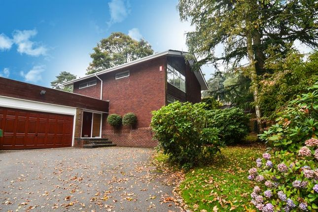 Thumbnail Detached house for sale in Pine Grove, Lickey, Birmingham