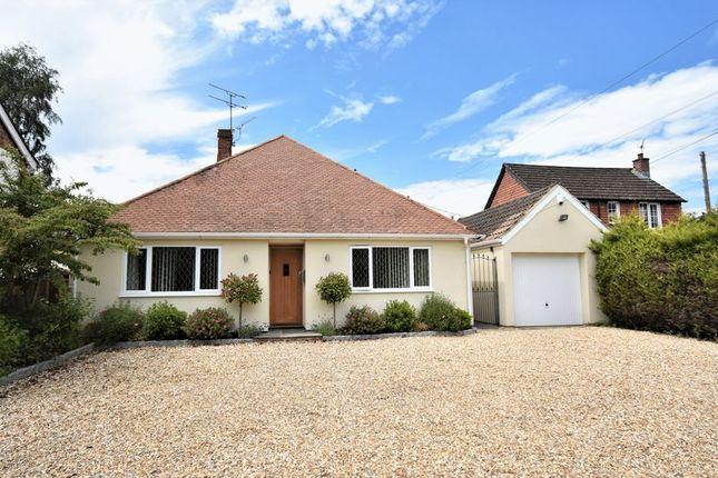 Bungalow for sale in Main Road, Bucks Horn Oak, Farnham