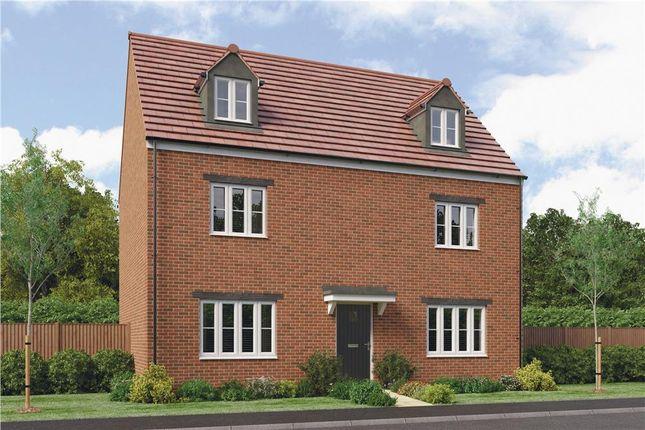 "Thumbnail Detached house for sale in ""Tadmarton"" at Collins Drive, Bloxham, Banbury"