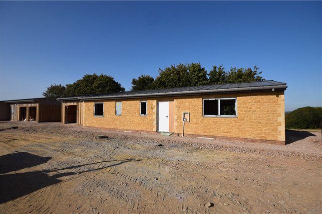 Thumbnail Detached bungalow for sale in Ash Lane, Martock, Somerset