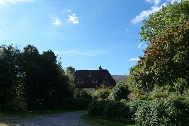Thumbnail Equestrian property for sale in Huntscott, Wootton Courtenay, Minehead, Somerset