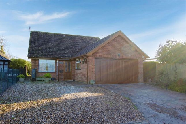 Thumbnail Detached bungalow for sale in Butlers Lane, Wrabness, Manningtree, Essex