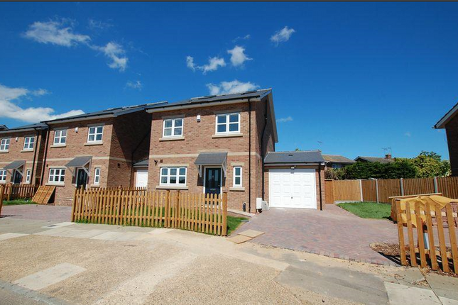Thumbnail Detached house for sale in Orsett Heath, Gray