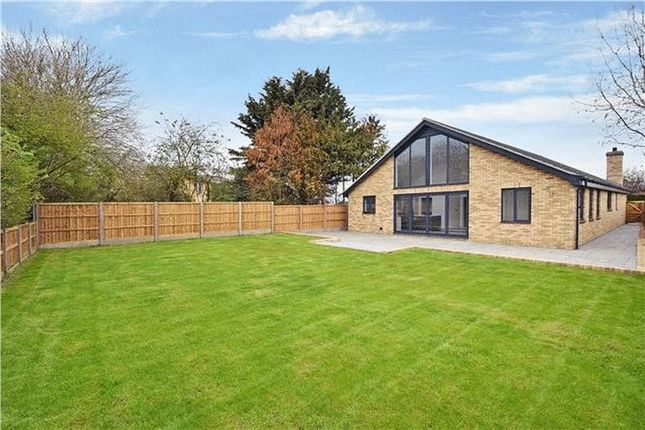 Thumbnail Bungalow for sale in Shefford Road, Meppershall, Shefford