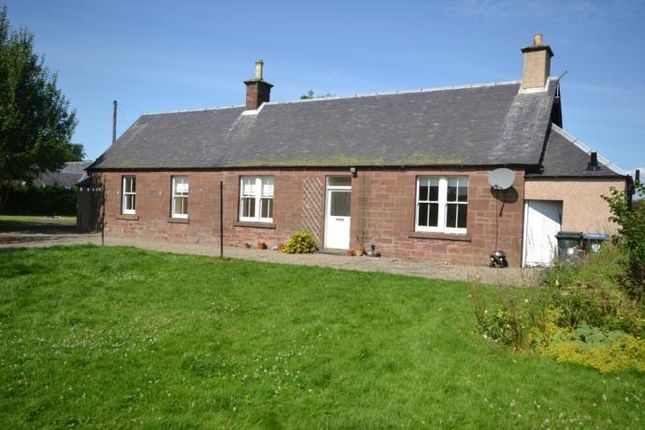 Thumbnail Detached house to rent in Myreriggs Road, Coupar Angus, Blairgowrie