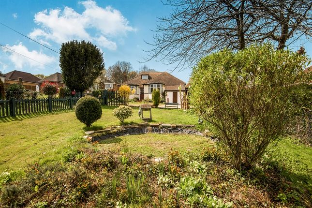 Thumbnail Detached bungalow for sale in Kent Street, Sedlescombe, Battle