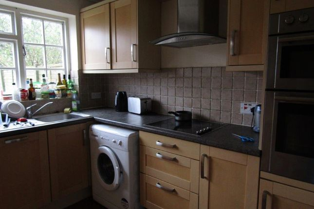 Thumbnail Shared accommodation to rent in Grosvenor Mews, Grosvenor Close, Southampton