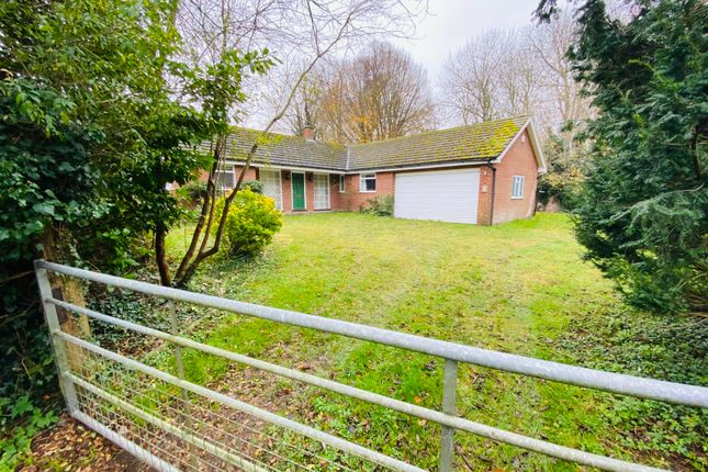 Thumbnail Detached bungalow to rent in Riverside, Northwold, Thetford
