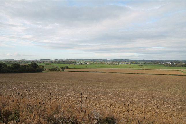 Thumbnail Land for sale in Ham Lane, Marnhull, Sturminster Newton