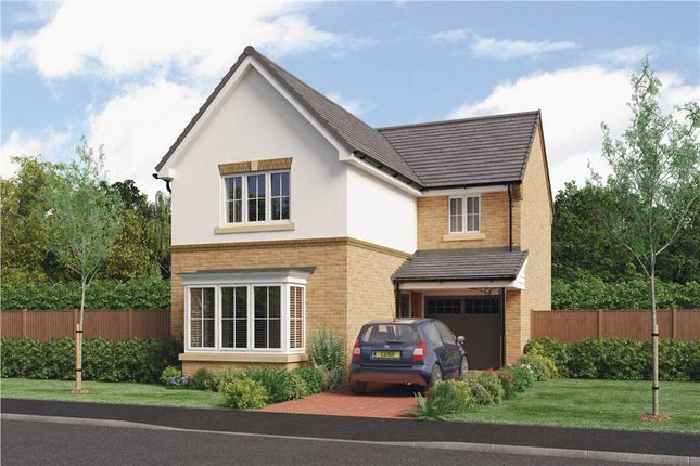 """Thumbnail Detached house for sale in """"The Orwell"""" at Parkside, Hebburn"""