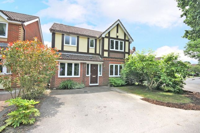 Thumbnail Detached house for sale in Tulip Gardens, Locks Heath, Southampton