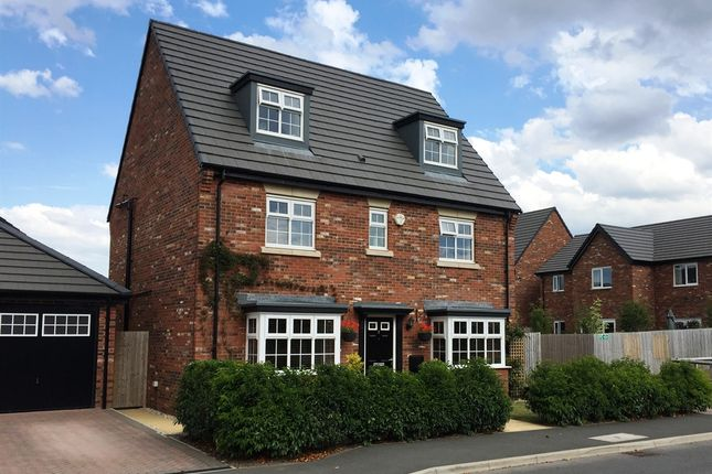 "Thumbnail Detached house for sale in ""Regent "" at Grange Drive, Carlisle"