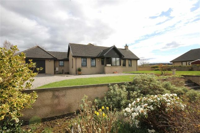 Thumbnail Detached bungalow for sale in Forres
