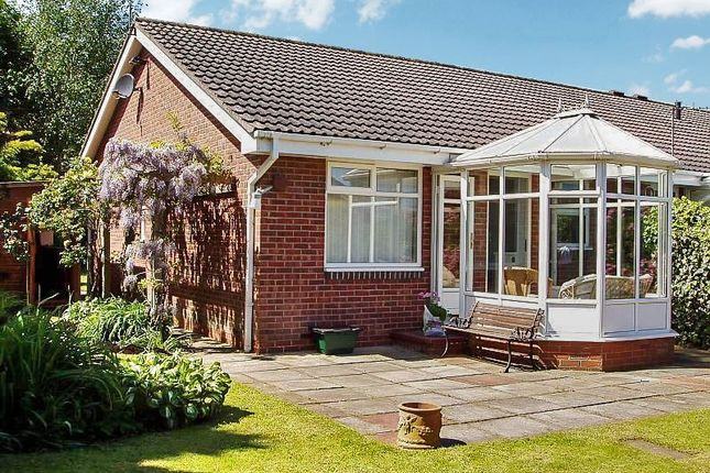 2 bed bungalow to rent in The Steads, Morpeth NE61