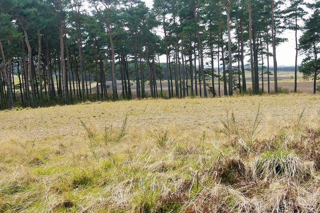 Thumbnail Land for sale in The Larches Wester Buthill, Roseisle