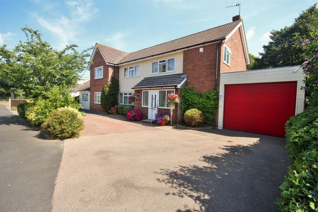 Thumbnail Detached house for sale in Manor Close, Great Horkesley, Colchester, Essex