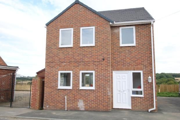 Thumbnail Detached house to rent in Moor View, Wheatley Hill