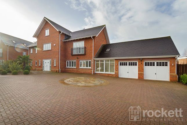 Thumbnail Detached house to rent in Freshwater Drive, Weston, Crewe, Cheshire