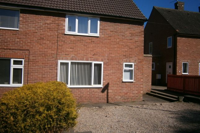 Thumbnail Semi-detached house to rent in Priestlands Road, Hexham