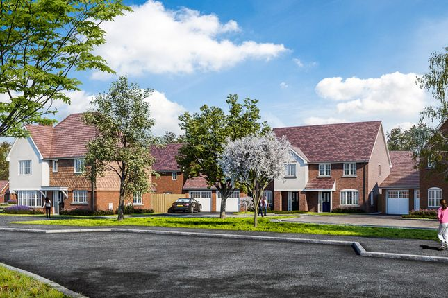"Thumbnail Property for sale in ""The Alder"" at Wren Drive, Finberry, Ashford"