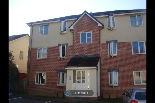 Thumbnail Flat to rent in Holne Chase, Plymouth