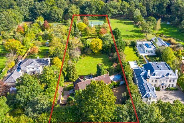 Thumbnail Property for sale in Princes Drive, Oxshott, Surrey