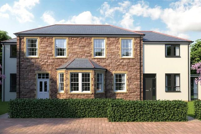 Thumbnail Semi-detached house for sale in The Hamptons, Cotford St. Luke, Taunton, Somerset