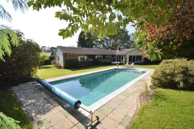 Thumbnail Detached house to rent in Pine Bank, Hindhead