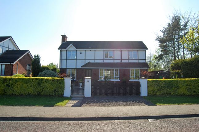 Thumbnail Detached house for sale in Highfield Park, Craigavon