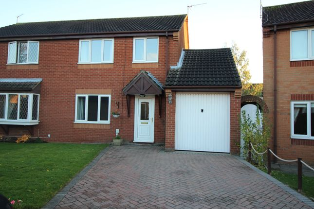 Thumbnail Semi-detached house to rent in Pelham Close, Beverley