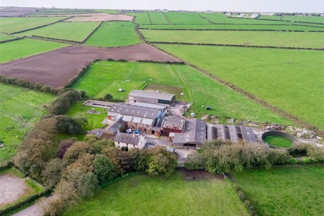 Thumbnail Detached house for sale in Mawbray Hayrigg, Silloth, Cumbria