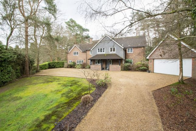 Thumbnail Detached house for sale in Pheasant Copse, Fleet