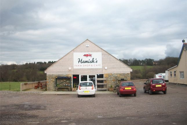 Thumbnail Retail premises for sale in Prowles Cross, Closworth, Nr Ryme Intrinseca, Yeovil