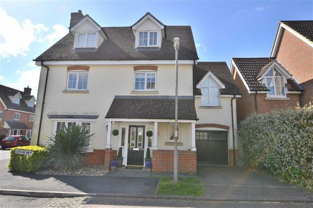 Thumbnail Detached house for sale in Cleveland Way, Stevenage, Herts