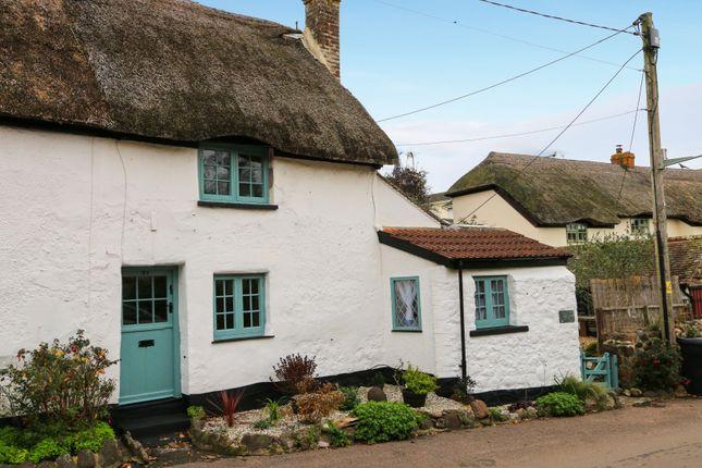 Thumbnail Cottage for sale in Holcombe Village, Holcombe, Dawlish