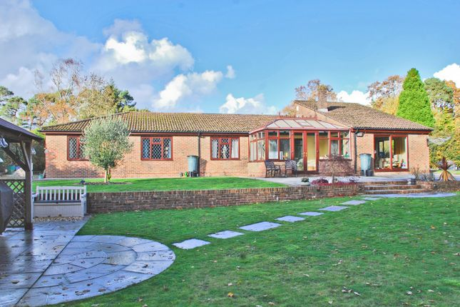 Thumbnail Detached bungalow for sale in New Forest Drive, Brockenhurst