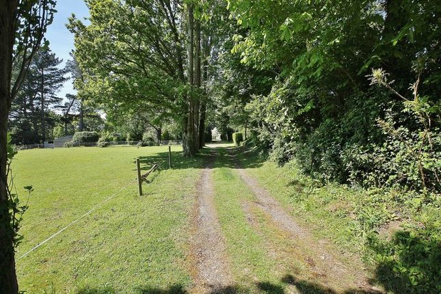 Photo 16 of Spear Hill, Ashington, Pulborough RH20
