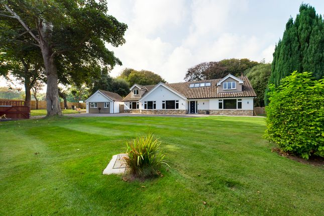 Thumbnail Detached bungalow for sale in Harbord Road, Overstrand, Cromer