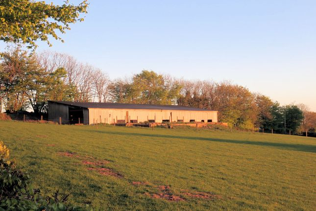 Thumbnail Land for sale in Chipstable, Taunton