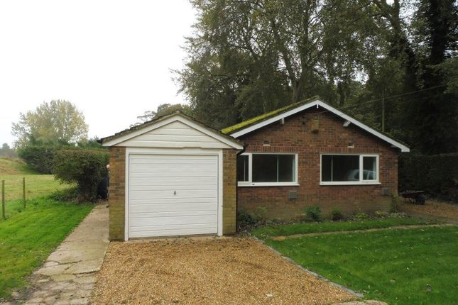 Thumbnail Bungalow to rent in Buxton Road, Horstead, Norwich