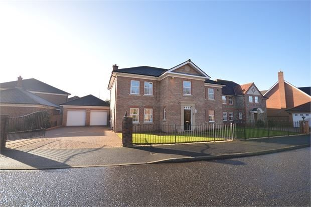 Thumbnail Detached house for sale in Bramhall Drive, High Generals Wood, Rickleton, Tyne & Wear.