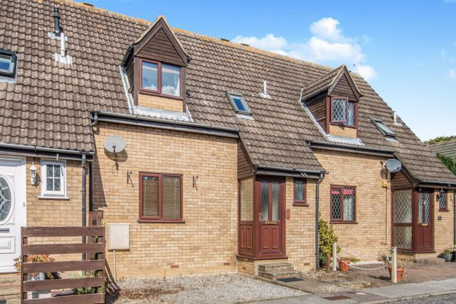 Thumbnail Terraced house to rent in Cowslip Crescent, Carlton Colville, Lowestoft