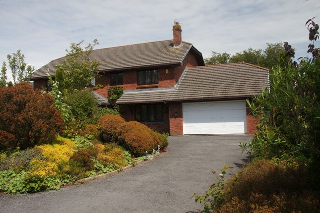 Thumbnail Detached house for sale in Hawthorne Close, Swiss Valley, Llanelli, Carmarthenshire