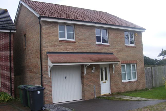 Thumbnail Detached house to rent in Room 2 House Share, St Mellons, Cardiff